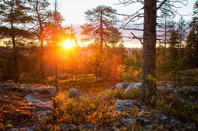 Kuva: Anna-Leena Muotka